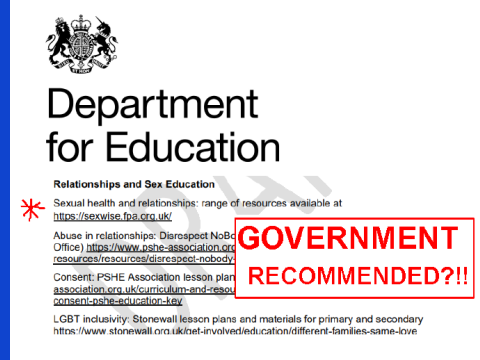 DfE suggests SEXWISE?!!