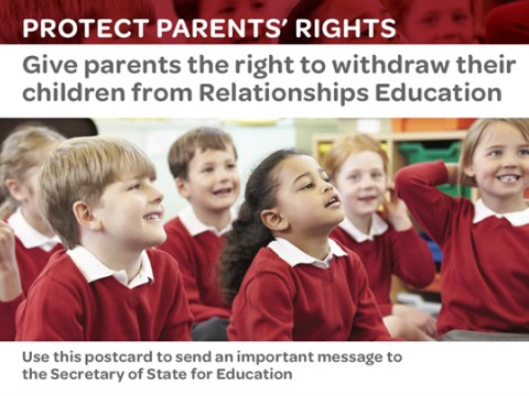 Protect Parent's Rights Image