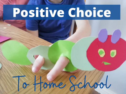 Positive Choice to Home School