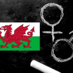 Is Education in Wales just Ideology?