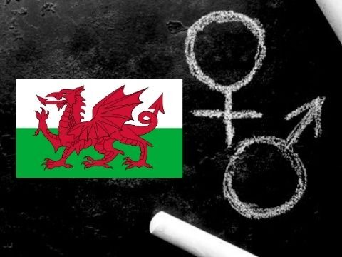 Sex Lessons in Wales